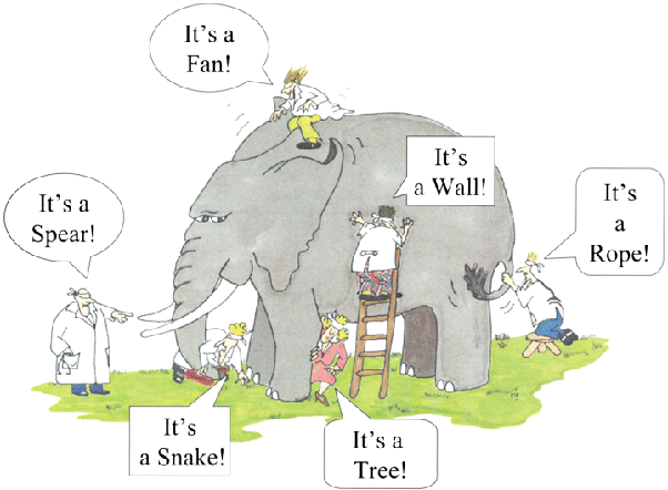 Software product is intangible and unable to feel and look, just like we're all blindfolded while touching the elephant.